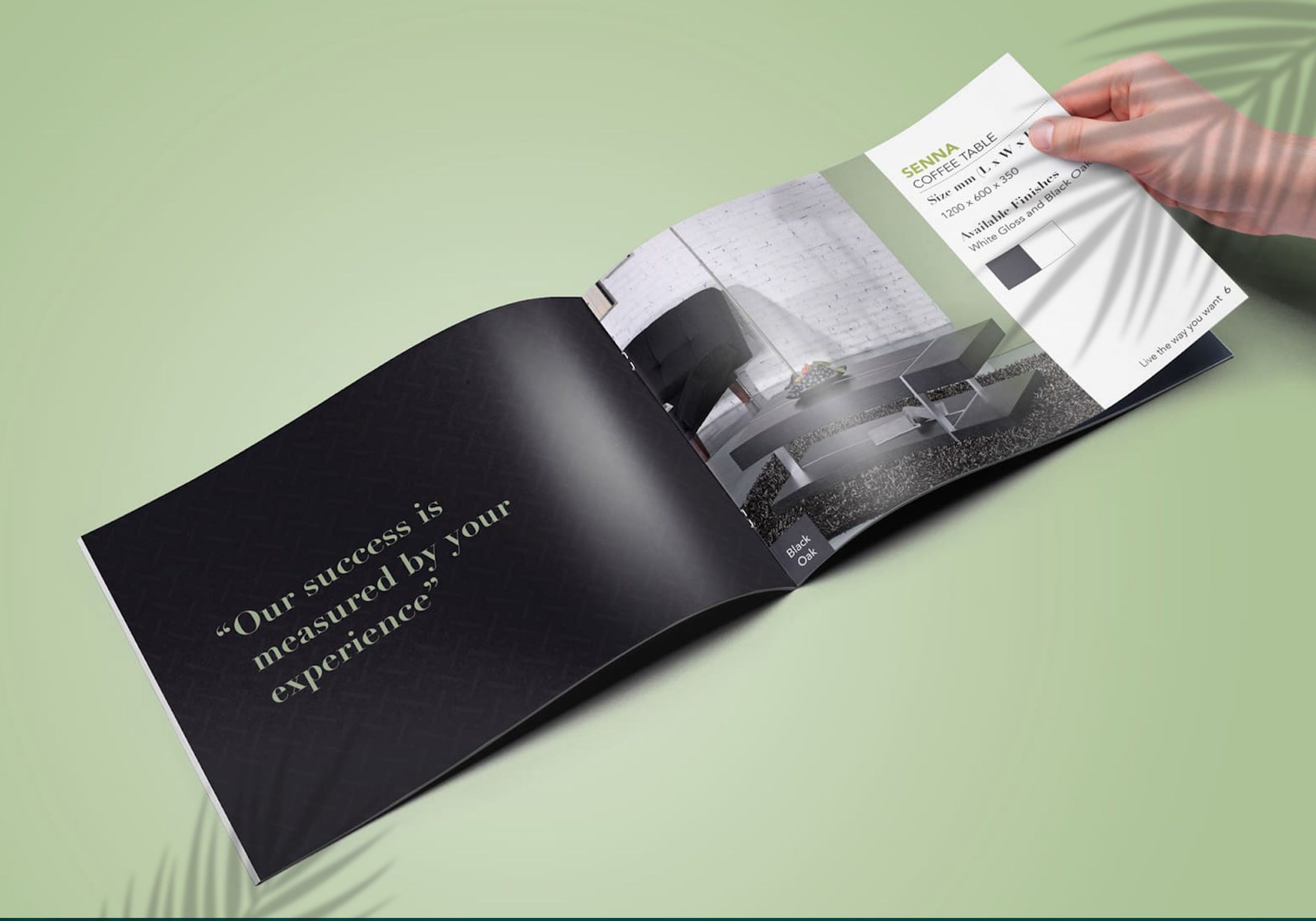 hướng dẫn thiết kế catalogue